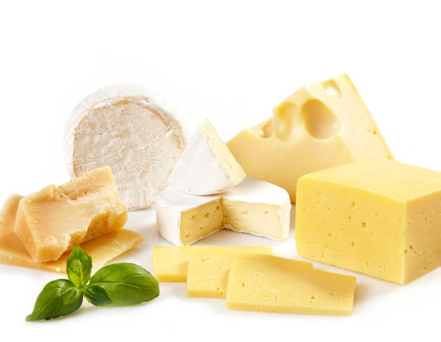 cheese manufacturing and production